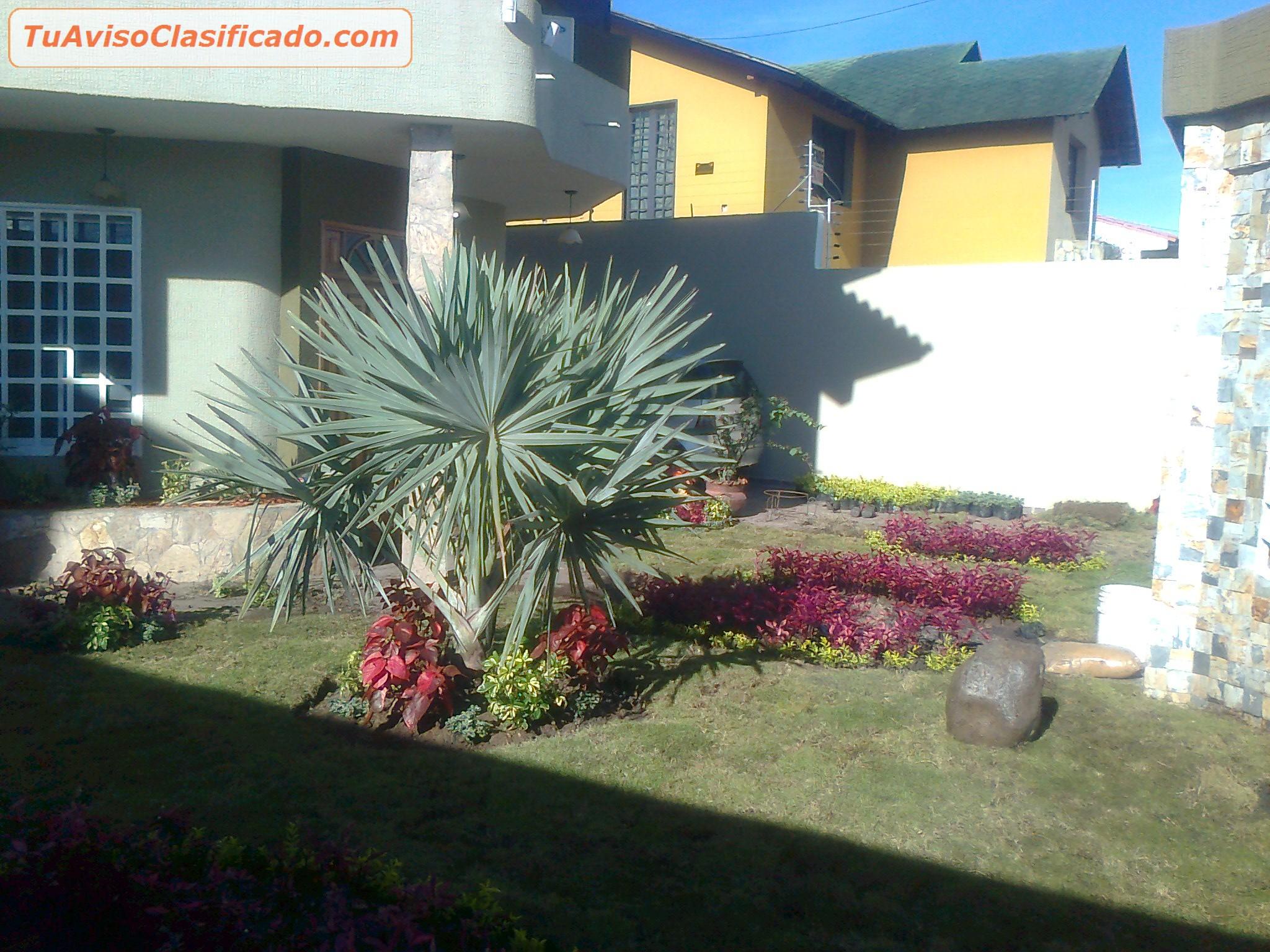 Vivero y proyectos de jardineria y ornatos jard n y for Proyecto jardineria