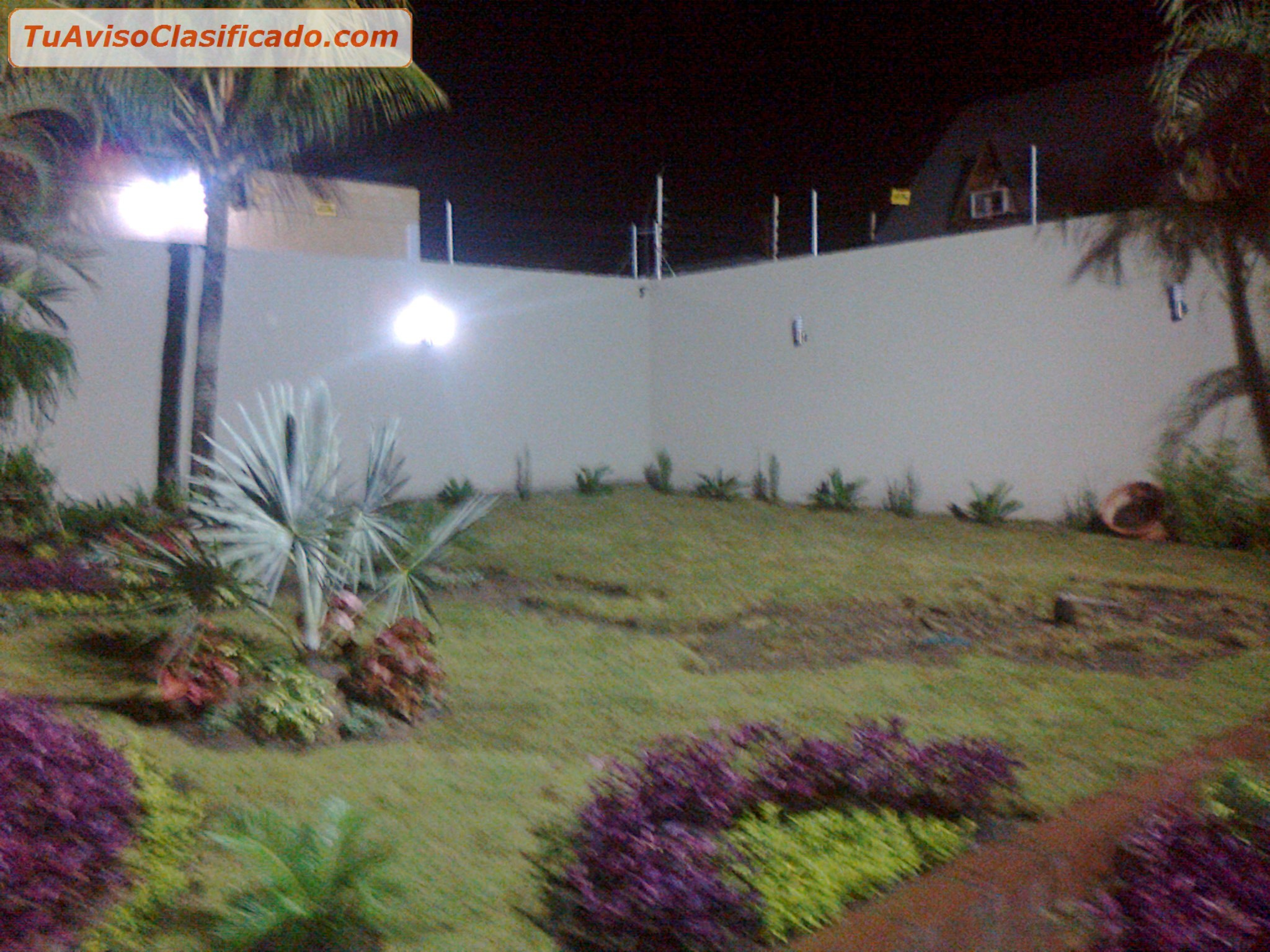 Plantas y semillas de jard n y viveros en Viveros y jardines