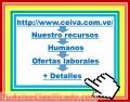 Docente de Educación Inicial (Maternal-Preescolar) Tiempo completo (8 horas).