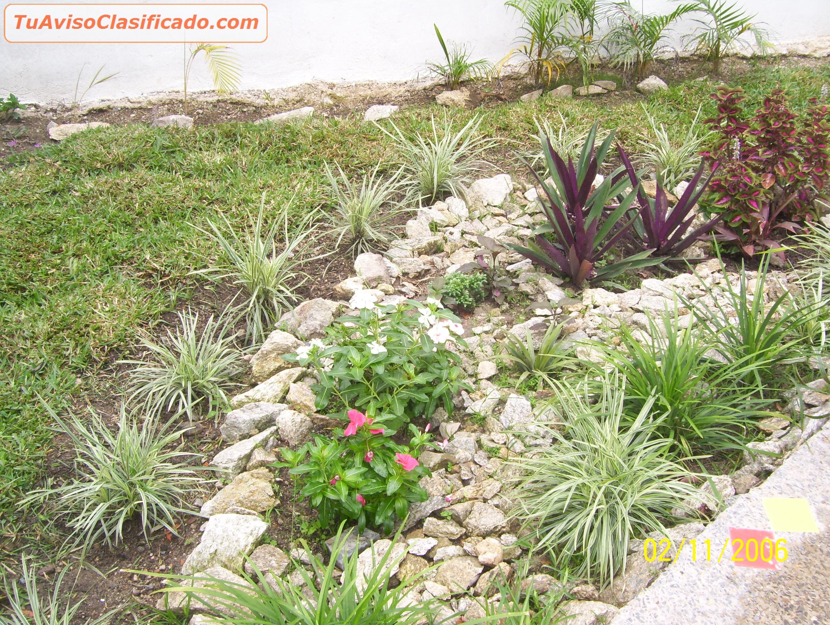 Embellecimiento de jardines y areas verdes jard n y for Jardines verdes