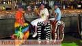 BARTENDERS , COCTELERIA Y BARRA MÓVIL en maracaibo
